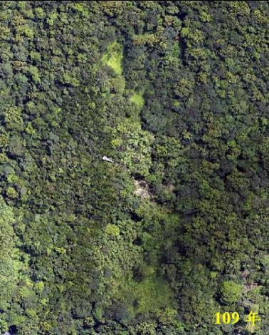 為推動108年起的4年計畫,大地處在107年(左圖)先行小區域疏伐試驗,對比109年(右圖)的結果,裸露地目前綠覆蓋幾乎已達100%。(2)