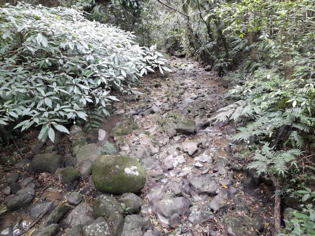 05指南溪中游溪谷的壺穴地形,是貓空最具代表性的景觀