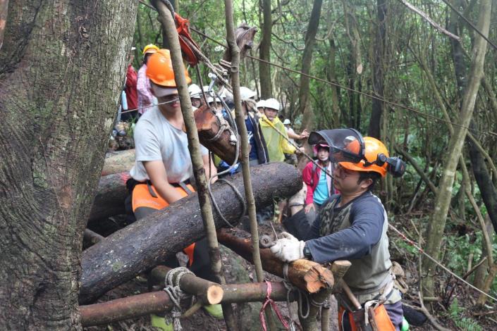 04_由專業人員示範林相改良實務工作