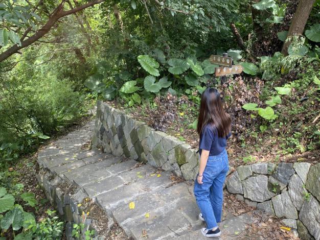 照片3_漫步於山林間,感受最原始的自然風光.JPG
