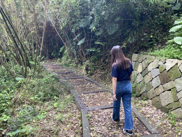 照片4_漫步於山林間,感受最原始的自然風光.JPG