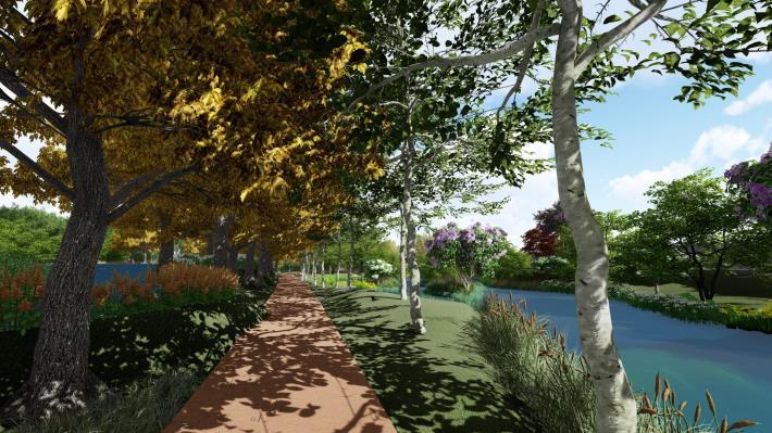 圖片2:公園模擬圖(落羽松廊道)