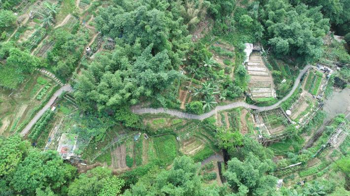 照片2:豹山溪環境整理