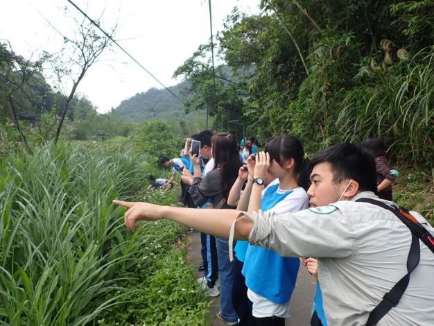 07學校教育及主題活動「鳥事一籮筐」,帶領民眾調查內溝溪鳥類,並將結果上傳至eBird(鳥類線上資料庫),為調查數據盡一份力,成為公民科學家。