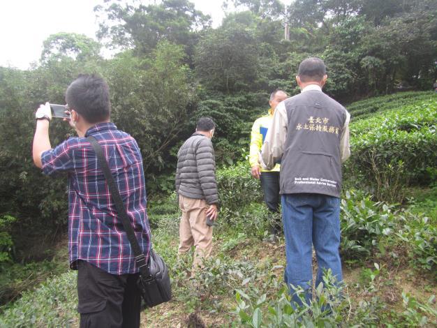 03大地處多次溝通協調,收回廢耕茶園,並與企業合作造林
