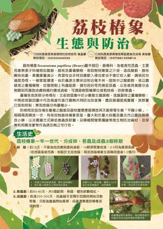 荔枝椿象宣導摺頁-01