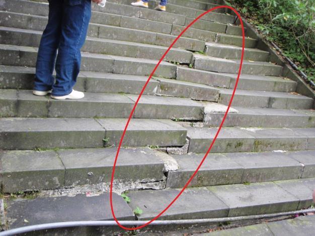 因邊坡不穩定,已有步道大範圍傾斜裂縫(將於護坡工程完成後一併修復)(標記)