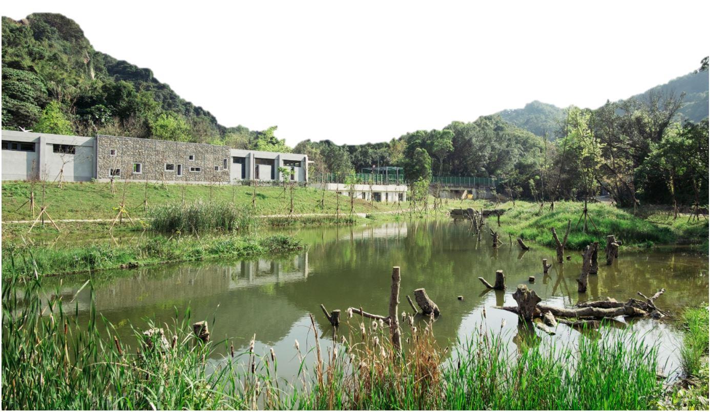 4.水域鳥踏美景圖