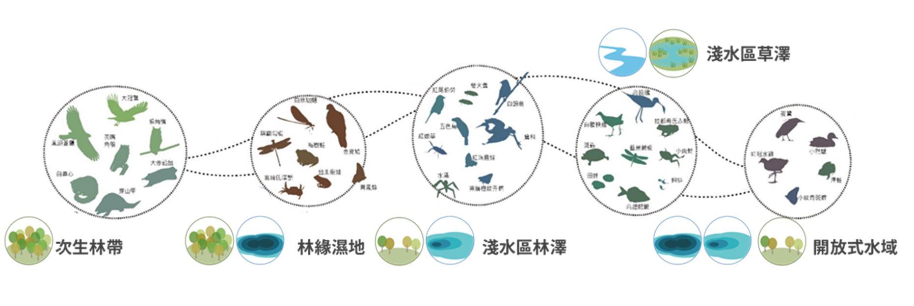 11.生態跳島示意圖