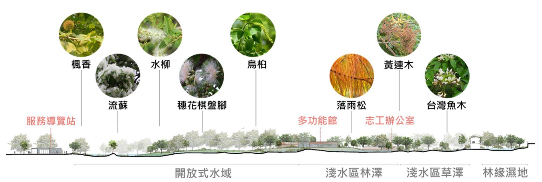 23.重要植栽分布