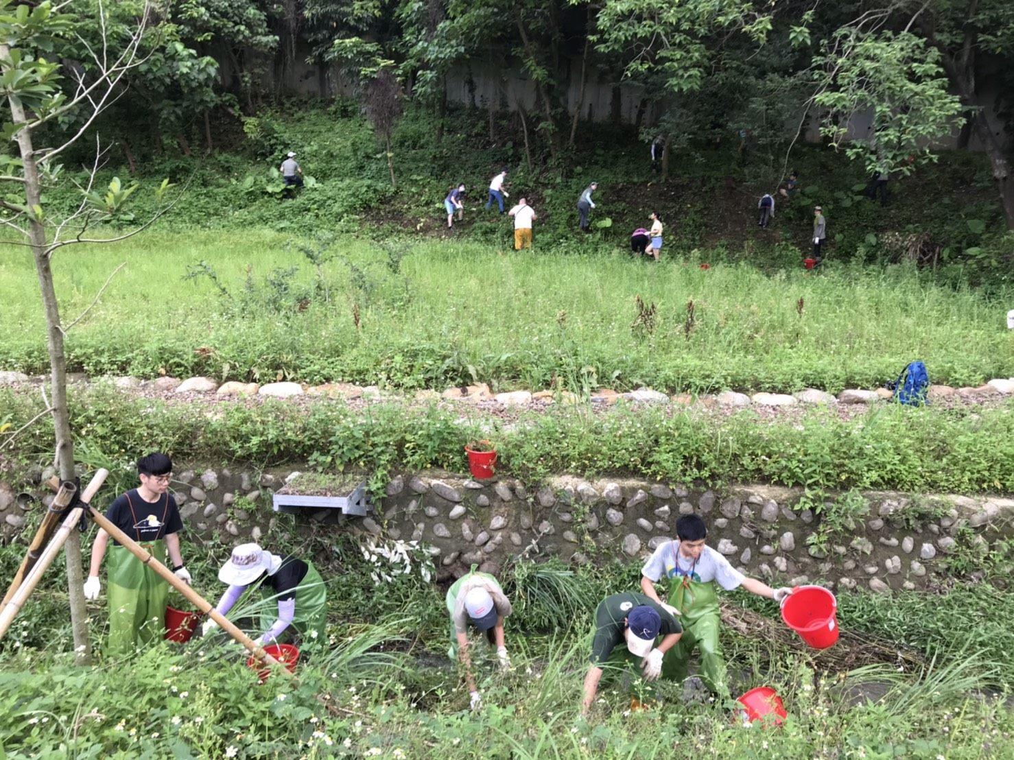 25.荒野協會清除外來種