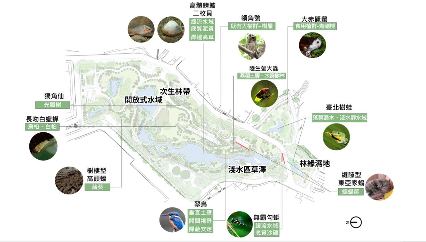 10.生態調查圖