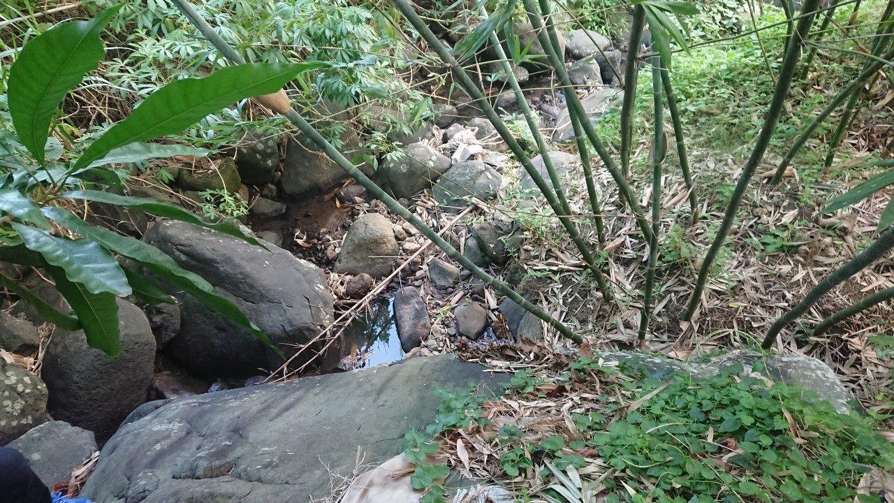 既有溪溝通水斷面狹小
