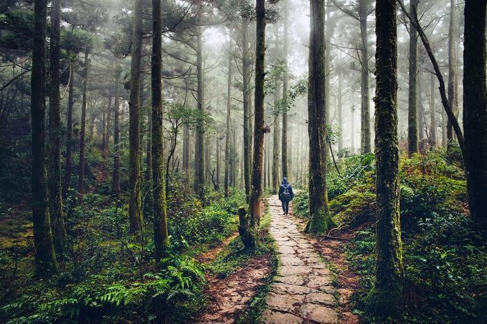 4-石梯嶺步道