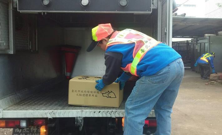 環保局清潔隊員使用犬貓遺體專用禮箱運送犬貓遺體[開啟新連結]