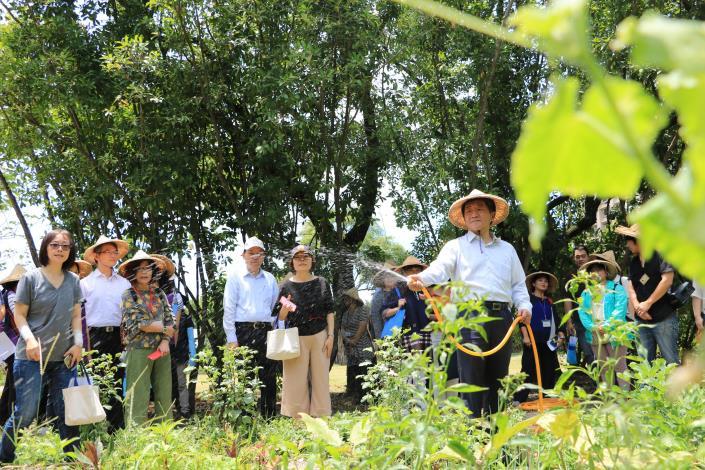 衛福部長示範用雨水回收的水澆水,不用容器裝雨水,避免孳生源
