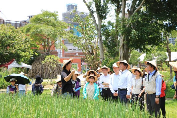 農場水稻田環境、防疫介紹