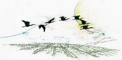 三重國小站的飛越花圃(圃)示意圖