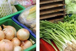 蘭州市場.94號蔬菜攤