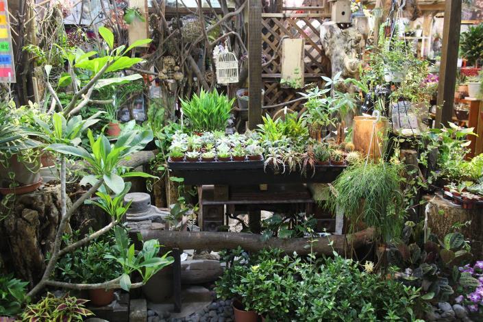 花藝還可以配合室內裝潢,使用小橋流水來烘托居家的自然美感