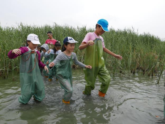 圖二:「濕地探險家」夏令營,深入濕地,穿上青蛙裝完成沼澤冒險[另開新視窗]