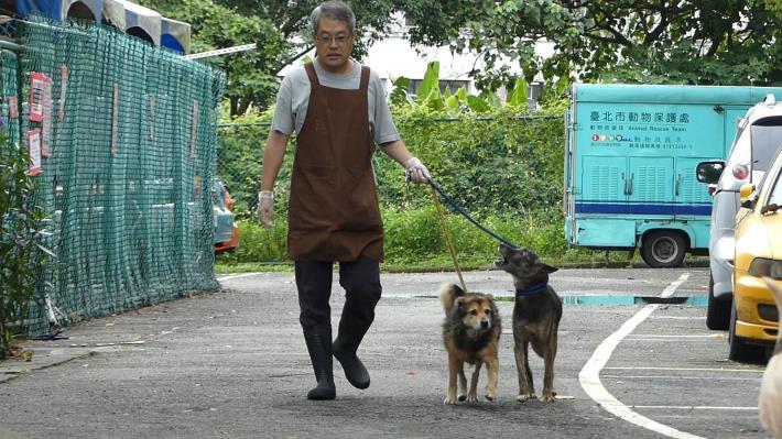 圖1. 志工王大哥協助犬隻攜出運動