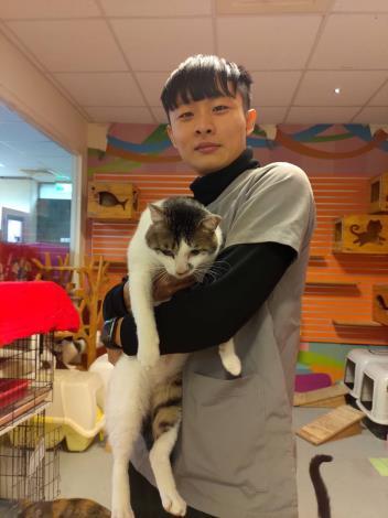 圖三:新北石碇接回貓隻接受親近訓練