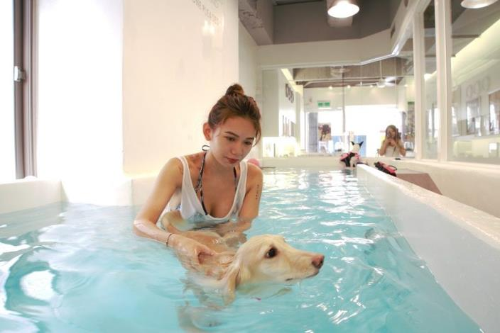 北歐寵物旅館游泳館(北歐三狗有限公司)
