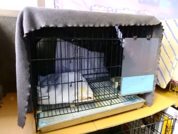 犬隻收容籠舍備有毛巾及專用食盒