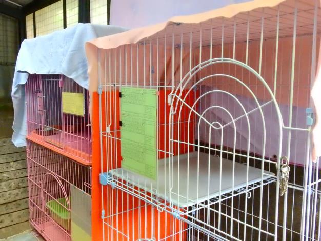 貓隻專用籠舍以1籠1貓原則提供充足空間