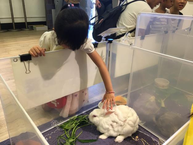 圖5、活動現場有小動物認養活動