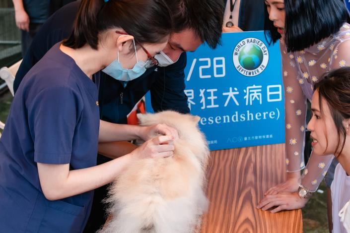 圖1、飼主每年都應為毛孩施打狂犬病疫苗