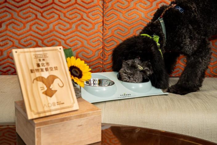 圖2.「動物友善空間毛起來購」成果發表會讓狗狗品嘗特製寵物餐點