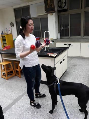 圖3、貓犬學校春季班動態課程讓飼主帶毛孩現場互動圖