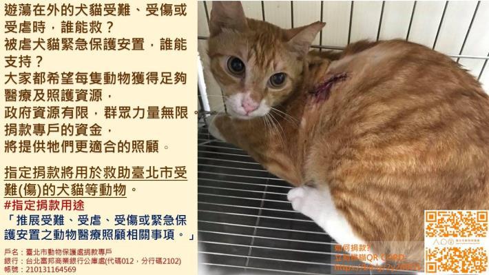指定用途第3款-受難及受傷動物醫療照護顧.JPG