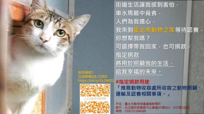 指定用途第2款-動物收容動物照顧及認養.JPG