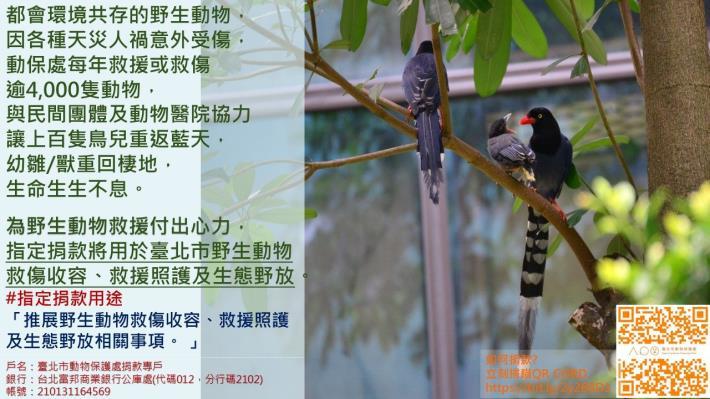 指定用途第4款-野生動物收容救援及野放.JPG