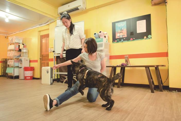 圖2_貓犬學校動態課程讓飼主帶毛孩現場互動