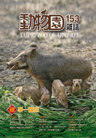 臺北市立動物園蒐羅一系列與「豬」相關的小常識,預計以特展及雜誌出版的形式,和民眾分享資訊[開啟新連結]