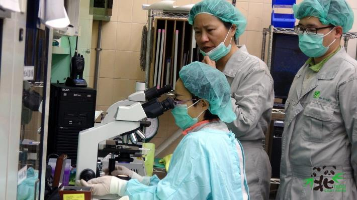 中國保護大熊貓研究中心專家周應敏高級工程師(前)特別給予大家非常寶貴大貓熊繁殖的操作經驗