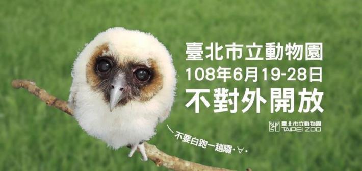 臺北市立動物園將自108年6月19日(三)起至108年6月28日(五)止,共有10天「不對外開放」![開啟新連結]