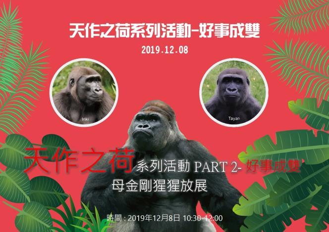 天作之荷系列活動-好事成雙-母金剛猩猩放展