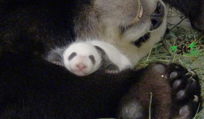 母女倆睡得好熟!