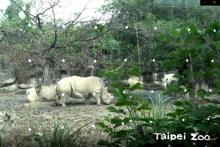 請大家到動物園參觀時,不要用手去摳玻璃面上的貼紙哦!