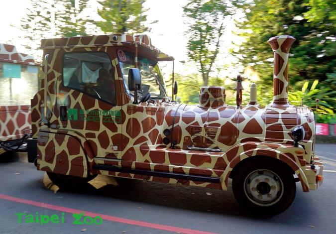 長頸鹿、老虎和斑馬等以動物斑紋作為外觀圖案設計的遊園列車,受到大小朋友的喜愛