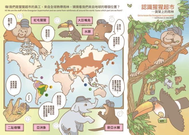 認識猩猩超市-貨架上的雨林學習單(正面)