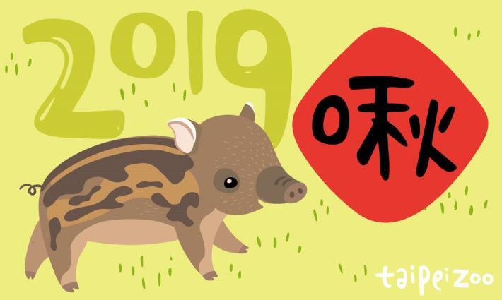 2019 動物認養啾麻吉春節專案