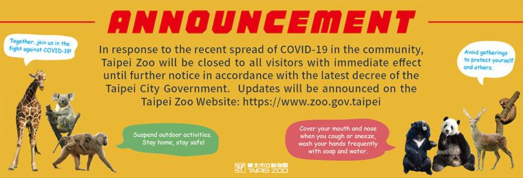 In response to the recent spread of COVID-19 in the community, Taipei Zoo will be closed to all visitors with immediate effect until further notice in accordance with the latest decree of the Taipei City Government.
