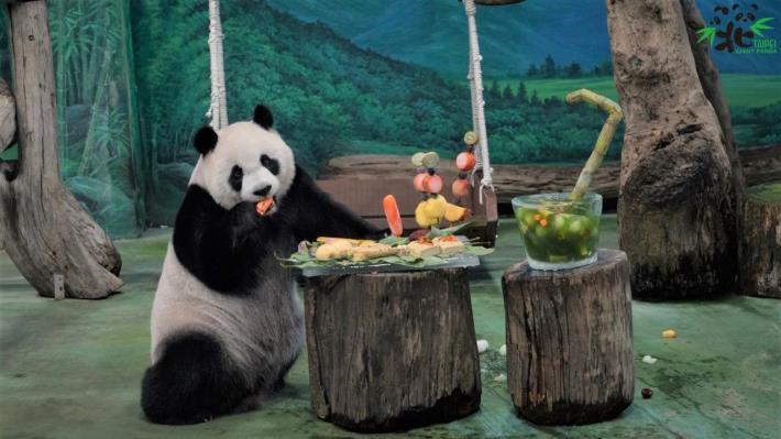 今(76)天是大貓熊「圓仔」的7歲生日.JPG