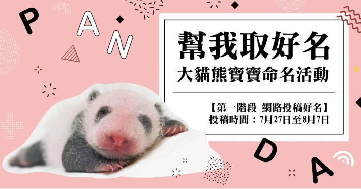 Help me get a great name! ~ 「Giant baby panda naming event」